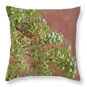 Desert Elements 7 Throw Pillow
