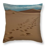 Desert Exploration Throw Pillow