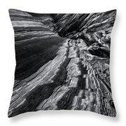 Desert Flow Throw Pillow