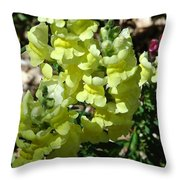Desert Flowers Virginia City Nevada Throw Pillow