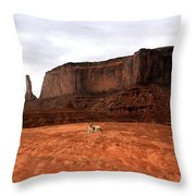 Desert Friend Throw Pillow