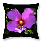 Desert Hibiscus With Honey Bee Throw Pillow