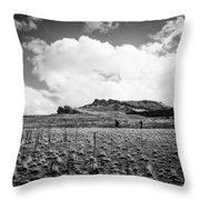 Desert Hike Throw Pillow