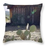 Desert Home Throw Pillow