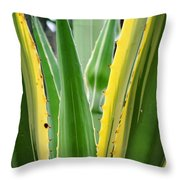 Desert House Aloe Succulent Throw Pillow