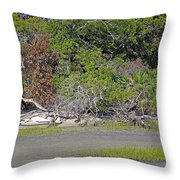 Desert Isle Throw Pillow