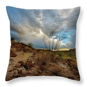 Desert Landscape With Clouds Throw Pillow