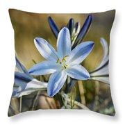 Desert Lily Throw Pillow
