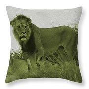 Desert Lions Throw Pillow