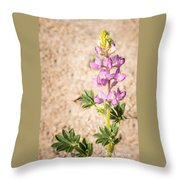 Desert Lupine Throw Pillow
