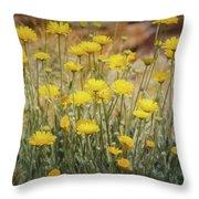 Desert Marigold Bouquet  Throw Pillow