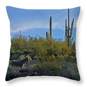 Desert Mule Throw Pillow