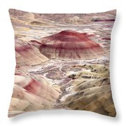 Desert Palette Throw Pillow