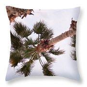 Desert Palm Throw Pillow