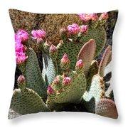Desert Plants - Fuchsia Cactus Flowers Throw Pillow