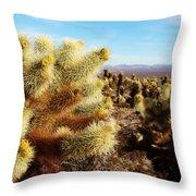 Desert Plants - Porcupine Cholla Throw Pillow