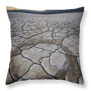 Desert Playa Circle Throw Pillow
