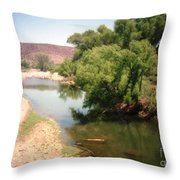 Desert Pond And Dry Mountains Throw Pillow