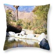 Desert Pond Throw Pillow
