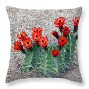 Desert Queen Throw Pillow
