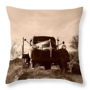 Desert Rat Flatbed Throw Pillow