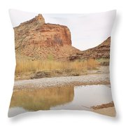 Desert Reflections 2 Throw Pillow