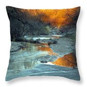 Desert Reflections Throw Pillow