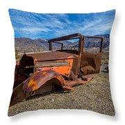 Desert Relic Throw Pillow