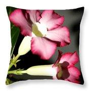 Desert Rose 7 Throw Pillow