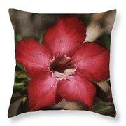 Desert Rose In Daytona Throw Pillow
