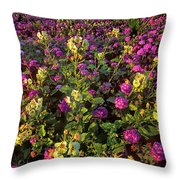 Desert Sand Verbena And Brown-eyed Primrose Below The Coyote Mountains California Throw Pillow