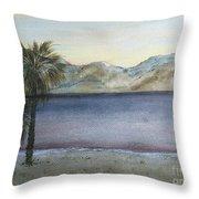 Desert Sea Throw Pillow