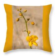 Desert Senna In Spring Throw Pillow