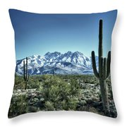Desert Snow Throw Pillow