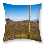Desert Spoon #3 Throw Pillow