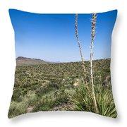 Desert Spoon Throw Pillow