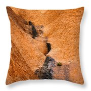 Desert Stain Throw Pillow