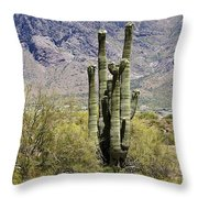 Desert Strength Throw Pillow