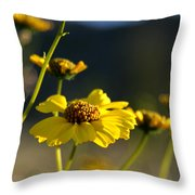 Desert Sunflower Throw Pillow