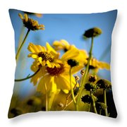 Desert Sunflower Variations Throw Pillow