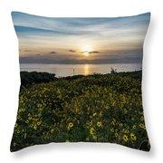 Desert Sunflowers Coastal Sunset 2 Throw Pillow