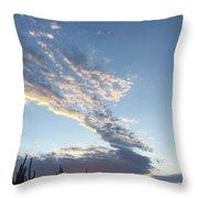 Desert Sunrise Throw Pillow