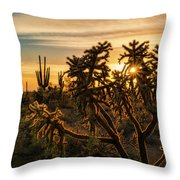 Desert Sunshine Shining Through  Throw Pillow