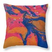 Desert Swirl Throw Pillow