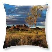 Desert Track Throw Pillow