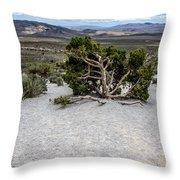 Desert Tree Throw Pillow