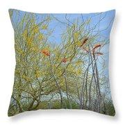 Desert Trees Throw Pillow