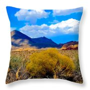 Desert View Throw Pillow
