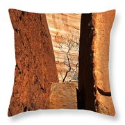 Desert Vise Throw Pillow