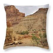 Desert Wash Throw Pillow